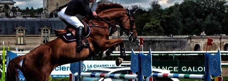 Ein gutes Pferd springt nicht höher als es muss